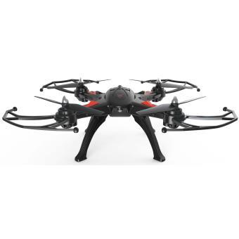 drone r bird