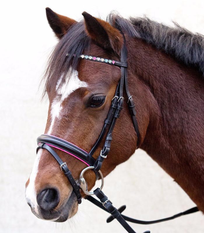 filet poney