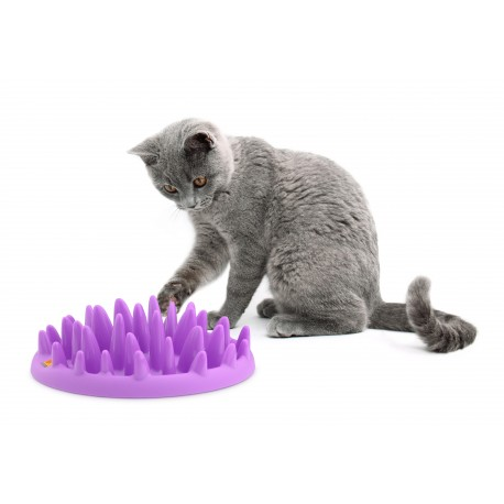 gamelle chat anti glouton