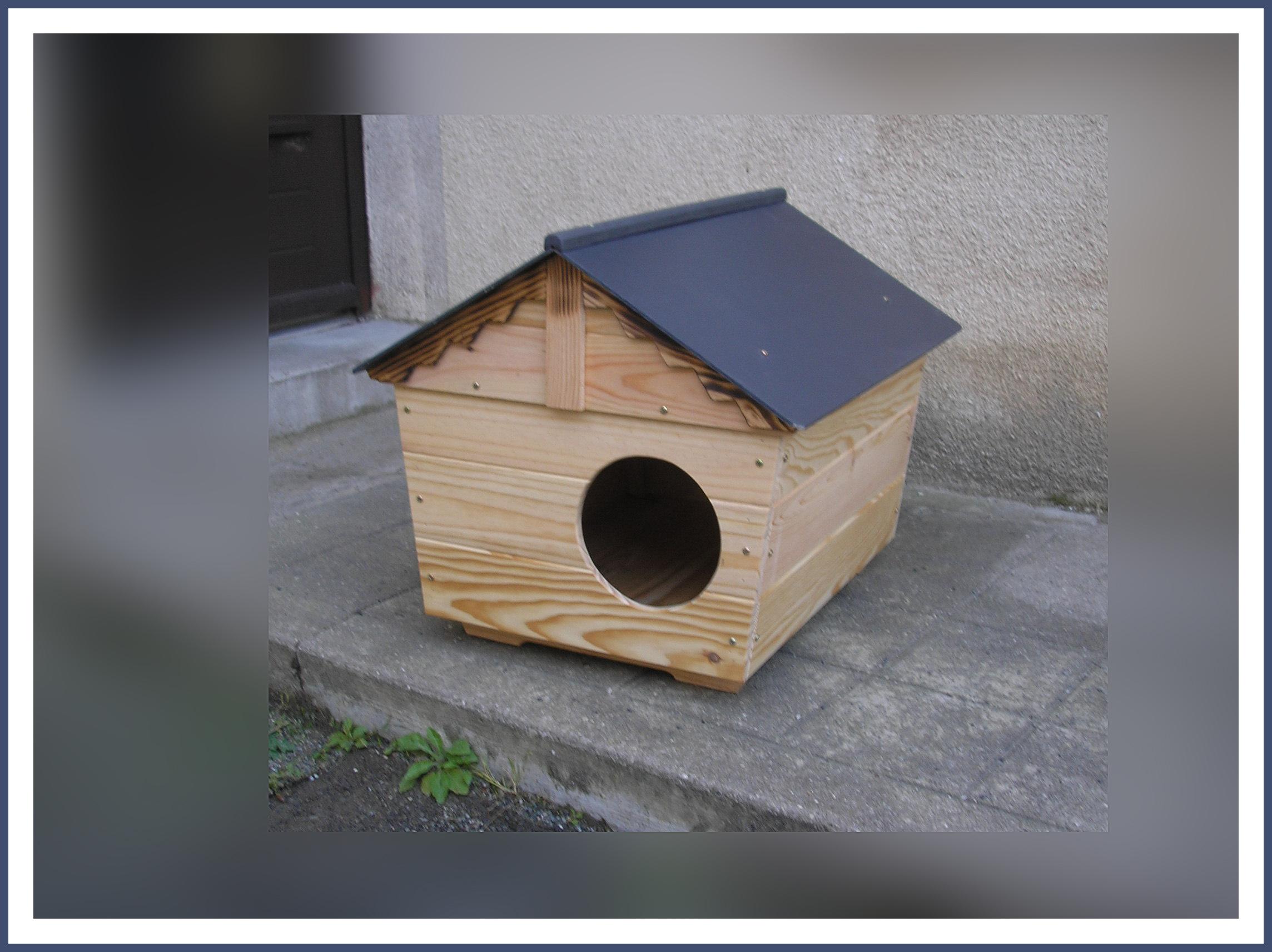 abri extérieur pour chat