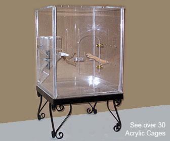 cage plexiglas