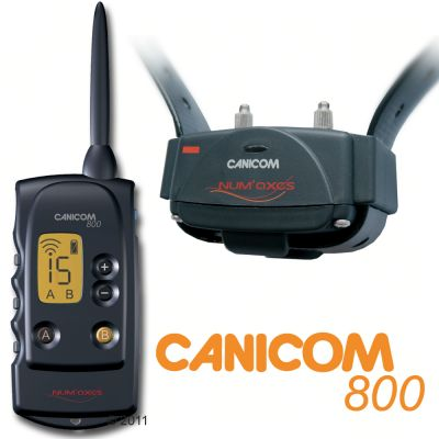 collier canicom 800