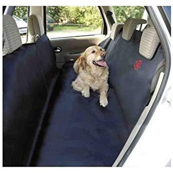 protection siege auto chien
