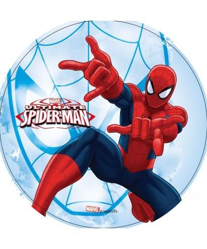 spiderman toile