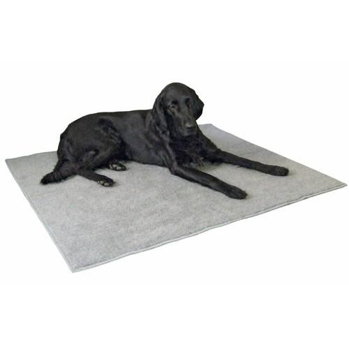 tapis de chien