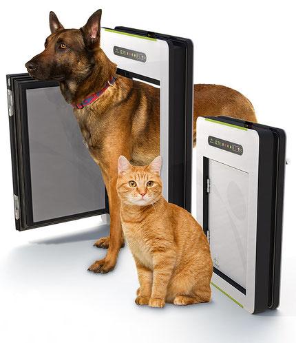 trappe pour chien automatique
